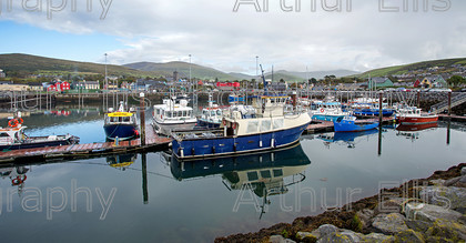 Dingle-SV-2-10 