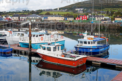 Dingle-SV-2-8 