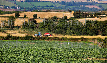 SV-Quish-050 