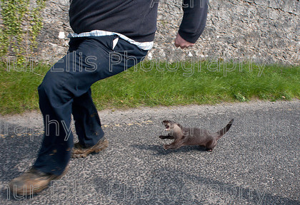 xx Tulla Otter 2 