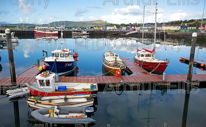 Dingle-SV-2-6 